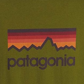 Patagonia Line Logo Long Sleeve T-Shirt - Willow Herb Green