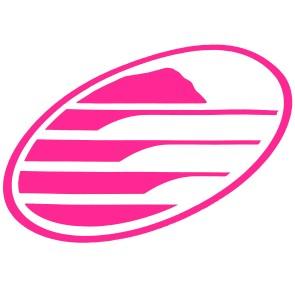 Cleanline Surf Big Rock Oval Sticker - Neon Pink